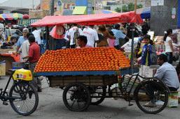 Les mandarines super pas chères